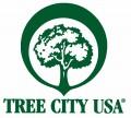 Icon of TreeCityLogo