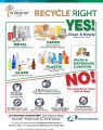 Icon of Recycle Right Flyer